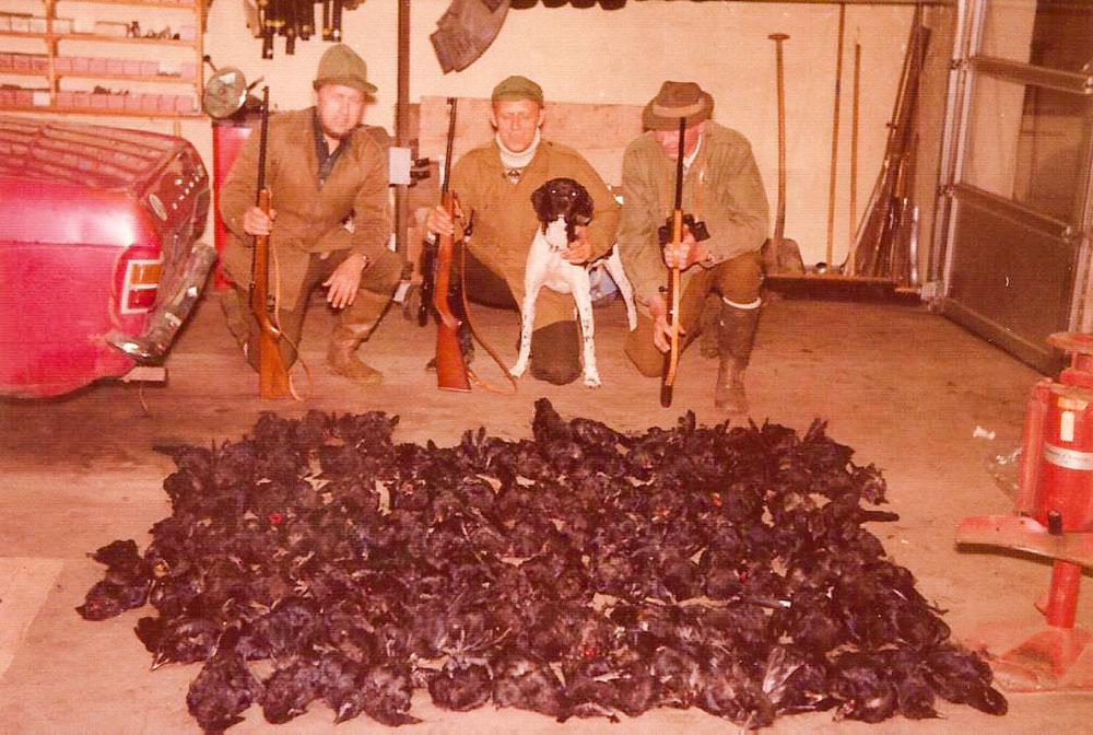 Rågejagt (90 stk.) med Henry, Lindegård og min far til højre, med cal. 22 Otterup